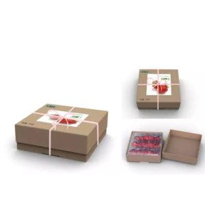 拓成设计_草莓盒包装设计